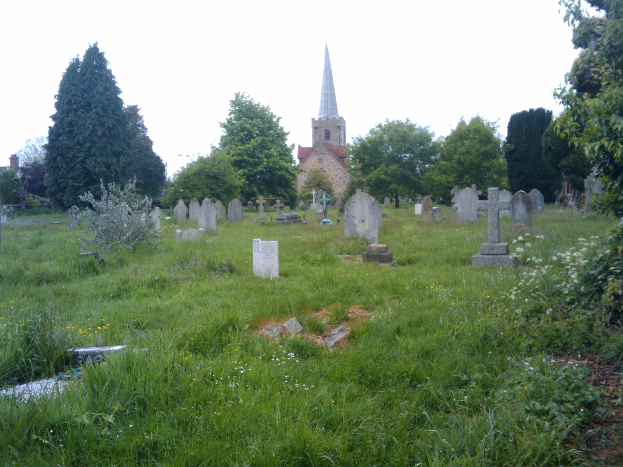 Grass needs cutting in St Mary's Church Year - May 2013.