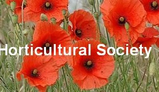 Great Baddow Horticultural Society
