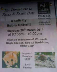 The Dormouse in Essex and Essex bats
