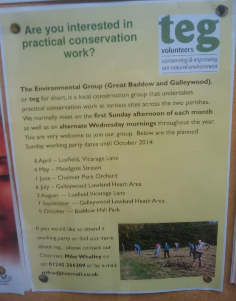 The Great Baddow Environmental Group